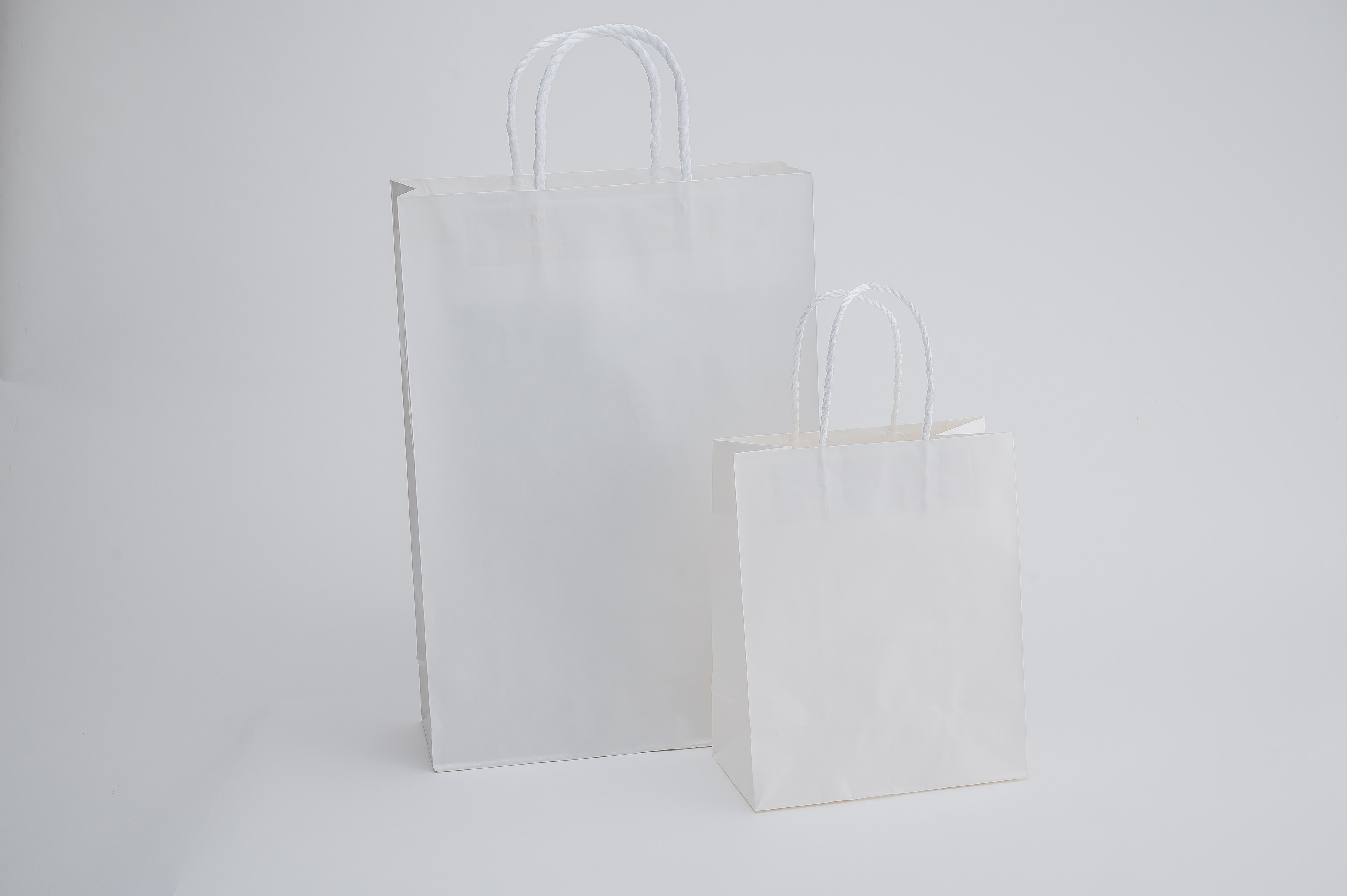 sara-la(さらら)の手提げ袋
